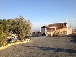 Haus in verkauf in calle Partida Los Leros, Romana (la) - 346295257