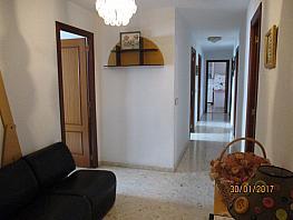Wohnung in verkauf in barrio Ancha de Castelar, Centro in San Vicente del Raspeig/Sant Vicent del Raspeig - 398153700