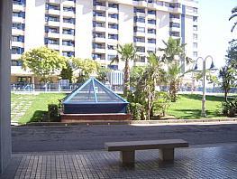 Apartamento en alquiler en calle Mara Nostrum, Patacona en Alboraya - 371237928