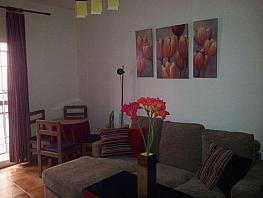 Comedor - Piso en alquiler en calle Laureado López Muñoz, Zaidín en Granada - 395396968