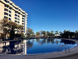 Piscina - Apartamento en alquiler en calle Mare Nostrum, Patacona en Alboraya - 379789939