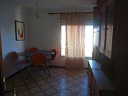 Salón - Piso en alquiler en calle Escultor Martorell, Canonja, la - 252979315