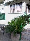 Pisos en alquiler Alguazas