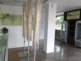 Salón - Local comercial en alquiler en calle Frigiliana, Girón-Las Delicias-Tabacalera en Málaga - 341604038