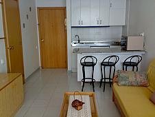Apartamentos en alquiler Pineda, La