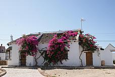 Casas Caños de Meca, Los