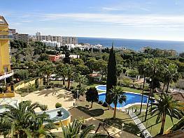 Vistas - Apartamento en alquiler en calle Camino del Praddo,  Parque de la Paloma  en Benalmádena - 363030839