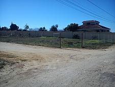 Parcelas Sevilla, Bellavista – La Palmera