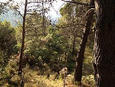 Terrenos Villares (Los)