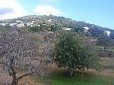 Pisos en alquiler Santa Eulalia del Río