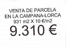 Parcelas Lorca