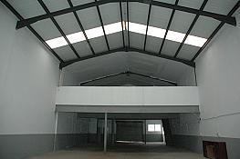Detalles - Nave industrial en alquiler en pasaje Ferran Sors, Can Roses en Rubí - 318876012