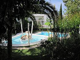 Piscina - Apartamento en alquiler en calle Reina Isabel la Catolica, Santa Ponça - 332691561