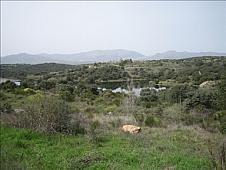 Terrenos Pedrezuela