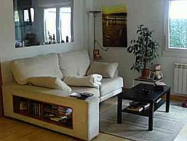 Comedor - Piso en alquiler en urbanización Pomaluengo, Castañeda - 333109524