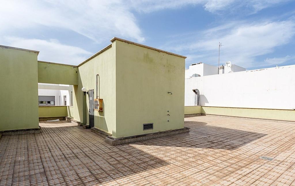 Local comercial en alquiler en Guanarteme en Palmas de Gran Canaria(Las) - 358107800
