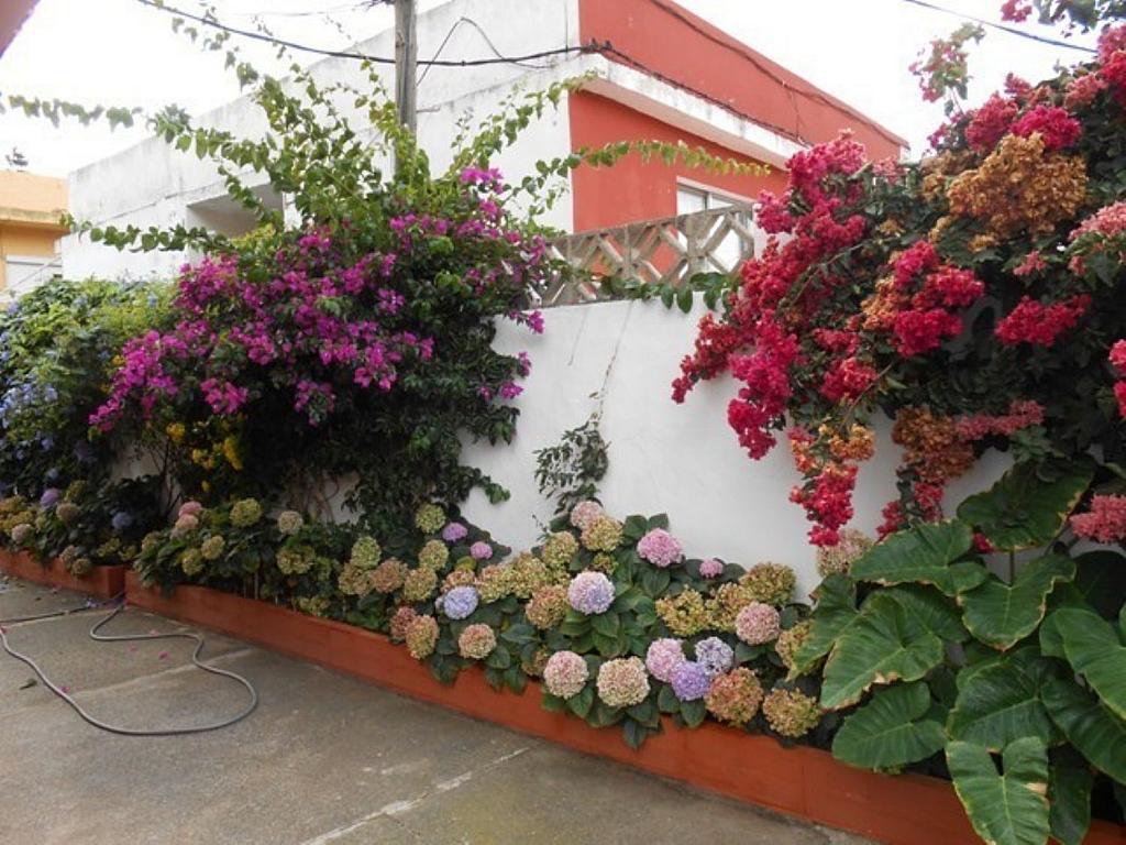 Casa en alquiler en Santa Brígida - 358101593