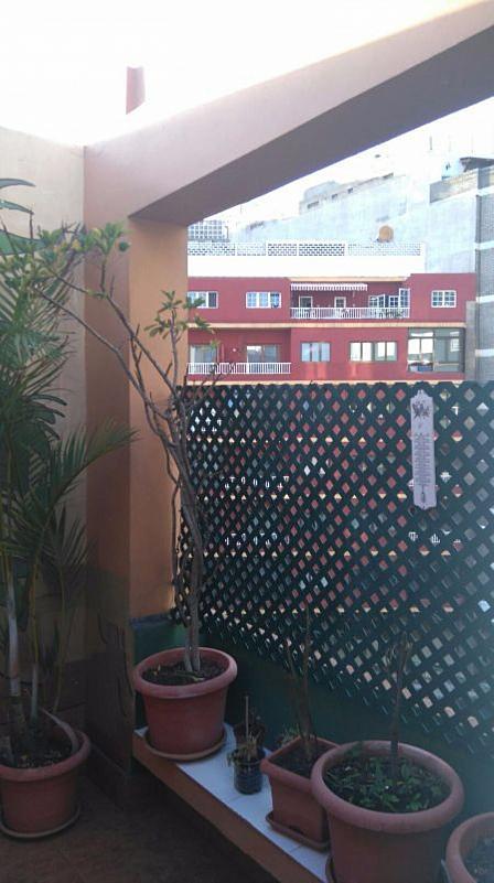 Ático en alquiler en Alcaravaneras en Palmas de Gran Canaria(Las) - 351401365