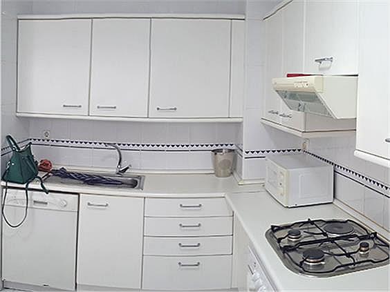 Casa adosada en alquiler en Palomas en Madrid - 244388986