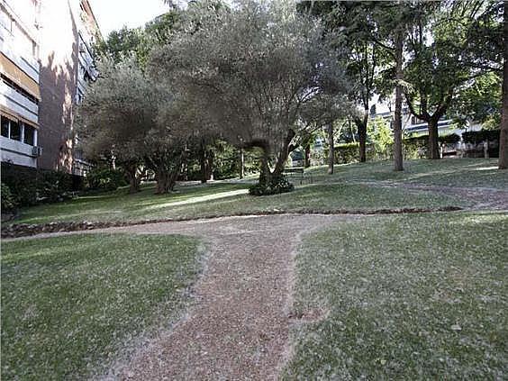 Piso en alquiler en Palomas en Madrid - 322969845