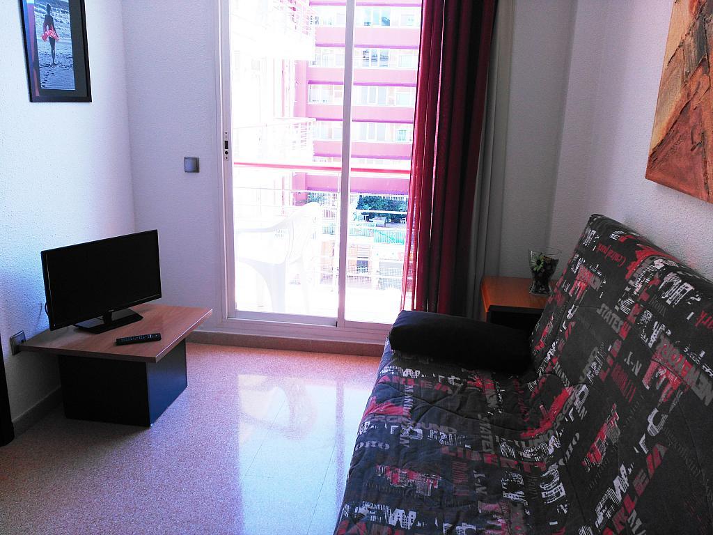 Apartamento en alquiler de temporada en calle Ramon y Cajal, Calella - 294033583