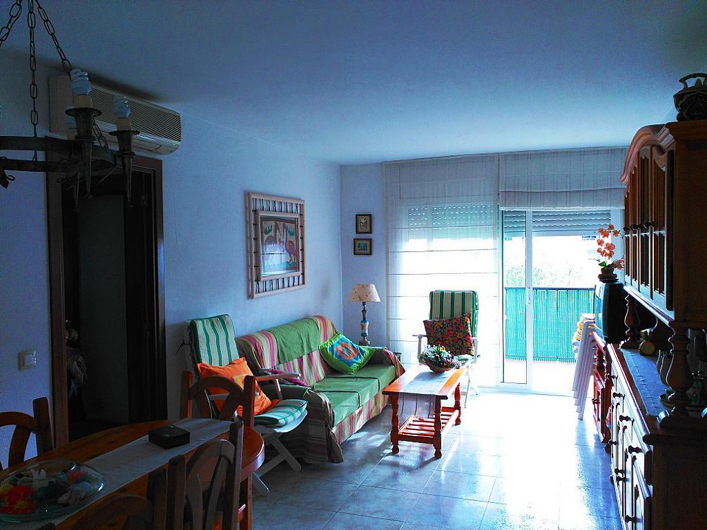 Salón - Piso en alquiler de temporada en pasaje Merçe Rodoreda, Calella - 285270203
