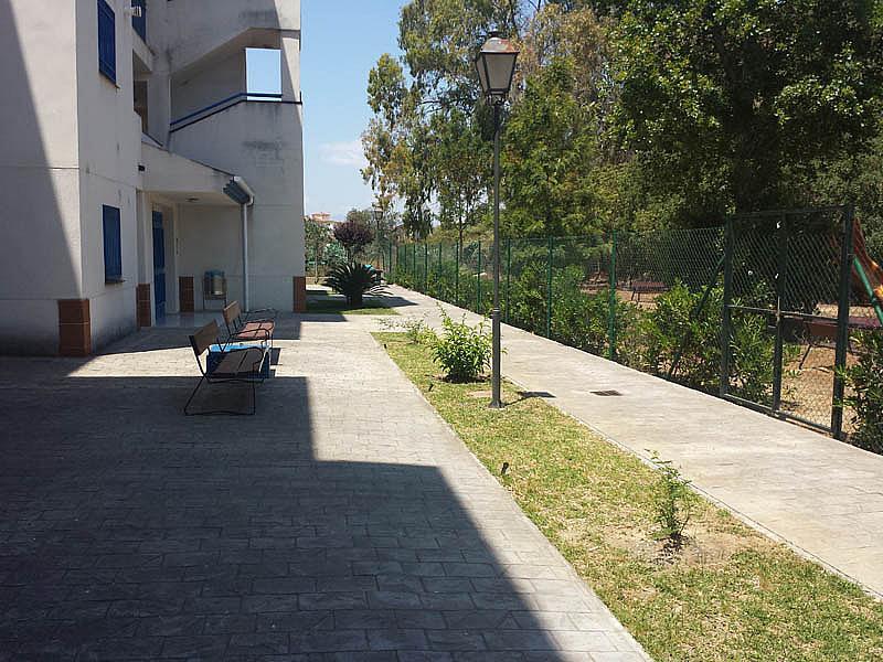 Piso en alquiler en urbanización Mezquitilla Playa, Mezquitilla - 140274492