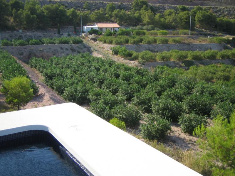Casa rural en alquiler en Alhama de Murcia - 50521624