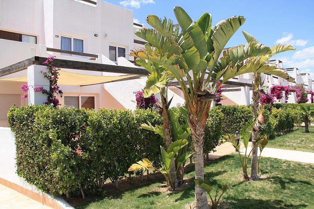 Piso en alquiler en Alhama de Murcia - 223930937