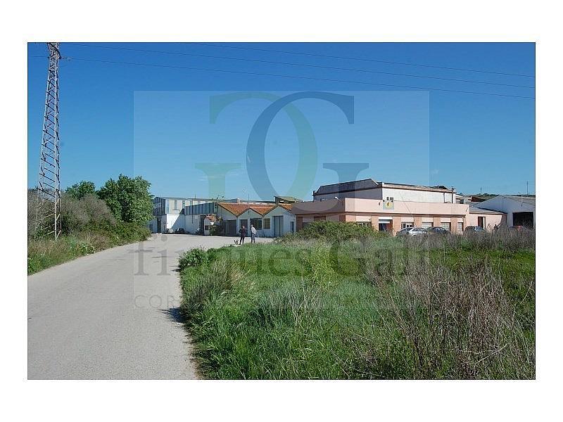 DSC_1545 (Small).JPG - Local comercial en alquiler opción compra en Sant Vicenç de Castellet - 285139790