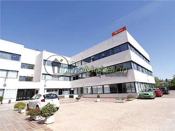 Oficina en alquiler en El Pinar-Punta Galea en Rozas de Madrid (Las) - 372296891