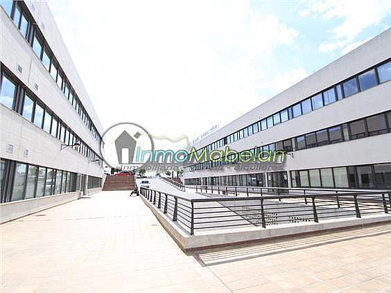 Oficina en alquiler en El Pinar-Punta Galea en Rozas de Madrid (Las) - 372296894