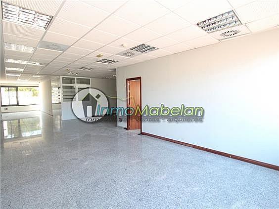 Oficina en alquiler en El Pinar-Punta Galea en Rozas de Madrid (Las) - 372296909