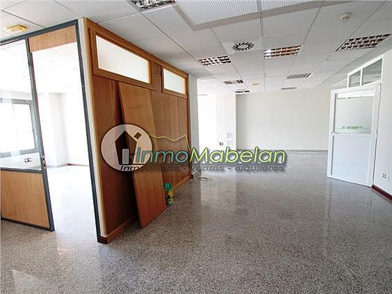 Oficina en alquiler en El Pinar-Punta Galea en Rozas de Madrid (Las) - 372296924