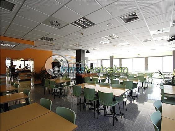 Oficina en alquiler en El Pinar-Punta Galea en Rozas de Madrid (Las) - 372296933