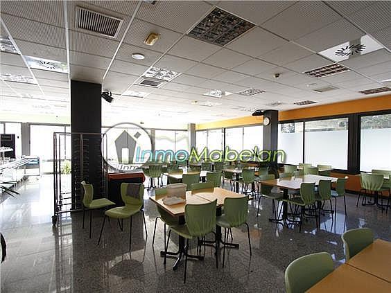 Oficina en alquiler en El Pinar-Punta Galea en Rozas de Madrid (Las) - 372296942