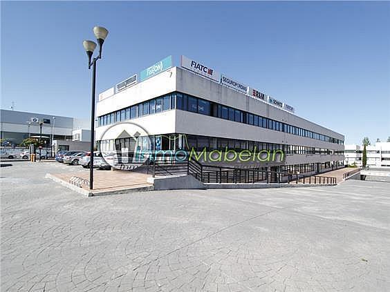 Oficina en alquiler en El Pinar-Punta Galea en Rozas de Madrid (Las) - 372296948