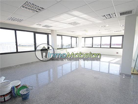Oficina en alquiler en El Pinar-Punta Galea en Rozas de Madrid (Las) - 397938822
