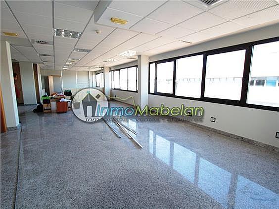 Oficina en alquiler en El Pinar-Punta Galea en Rozas de Madrid (Las) - 397938825