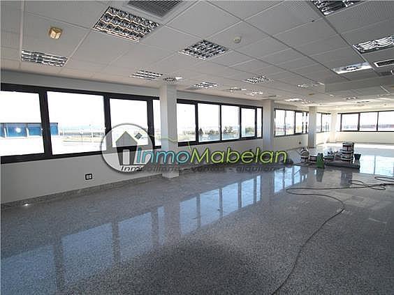Oficina en alquiler en El Pinar-Punta Galea en Rozas de Madrid (Las) - 397938831