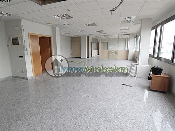 Oficina en alquiler en El Pinar-Punta Galea en Rozas de Madrid (Las) - 397938711