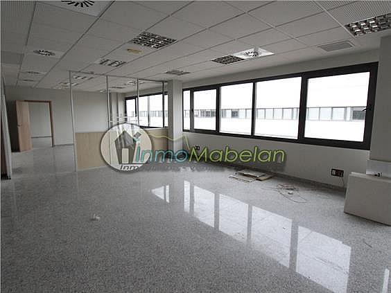 Oficina en alquiler en El Pinar-Punta Galea en Rozas de Madrid (Las) - 397938714