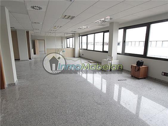 Oficina en alquiler en El Pinar-Punta Galea en Rozas de Madrid (Las) - 397938717