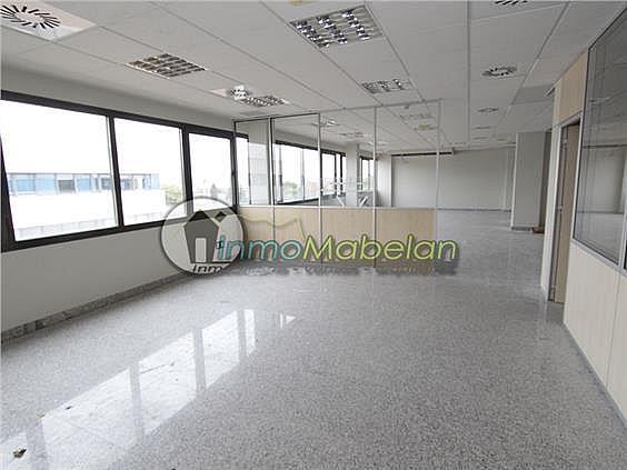 Oficina en alquiler en El Pinar-Punta Galea en Rozas de Madrid (Las) - 397938729