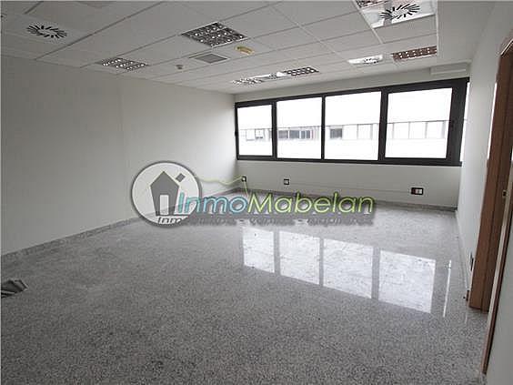 Oficina en alquiler en El Pinar-Punta Galea en Rozas de Madrid (Las) - 397938732