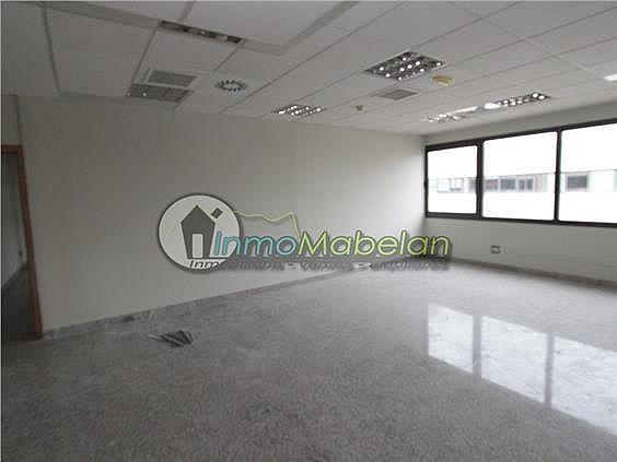 Oficina en alquiler en El Pinar-Punta Galea en Rozas de Madrid (Las) - 397938735