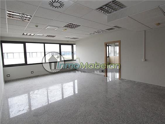 Oficina en alquiler en El Pinar-Punta Galea en Rozas de Madrid (Las) - 397938738