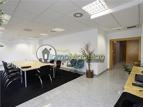 Oficina en alquiler en El Pinar-Punta Galea en Rozas de Madrid (Las) - 397938741