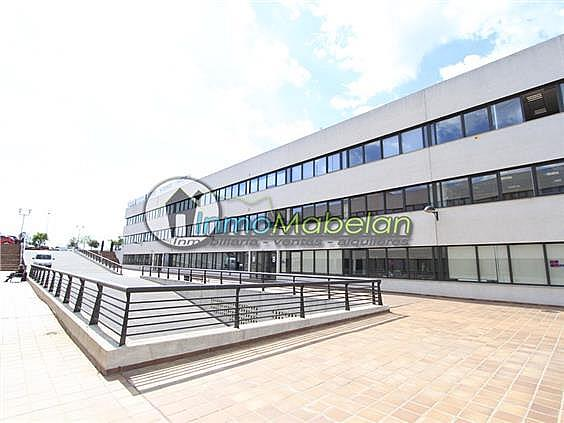 Oficina en alquiler en El Pinar-Punta Galea en Rozas de Madrid (Las) - 397938753