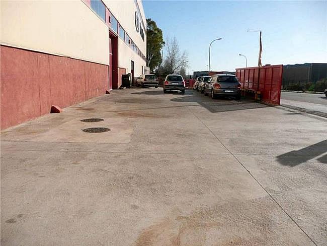 Nave industrial en alquiler en calle Miño, Can palet en Terrassa - 304206133